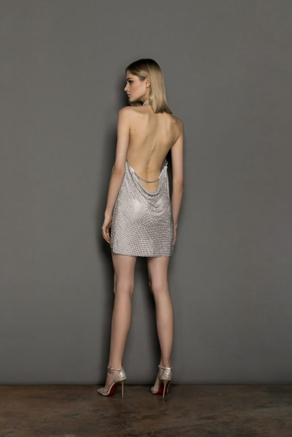Xenia Sliver Dress