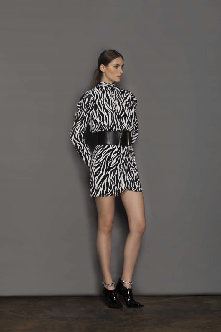 Zebra Mini Dress Resort Dresses